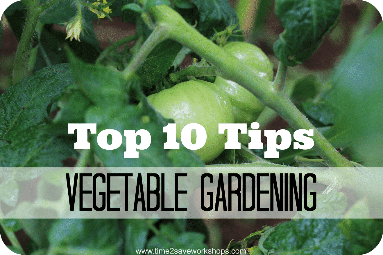 Top 10 Tips @Vegetable Gardening on time2saveworkshops.com