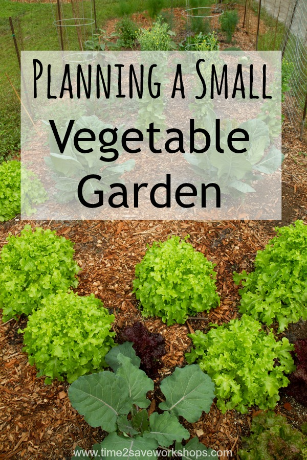 Small spaces planning a small vegetable garden for Small vegetable garden