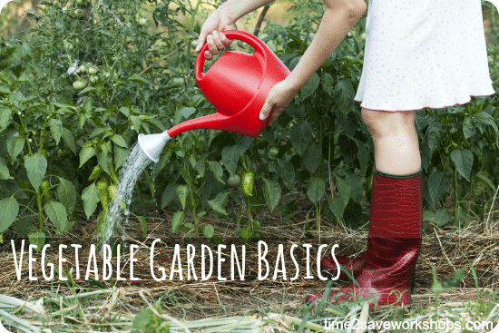 vegetablegardenbasics2