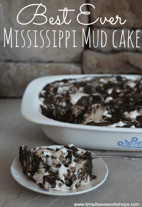 Best Ever Mississippi Mud Cake Recipe - Kasey Trenum