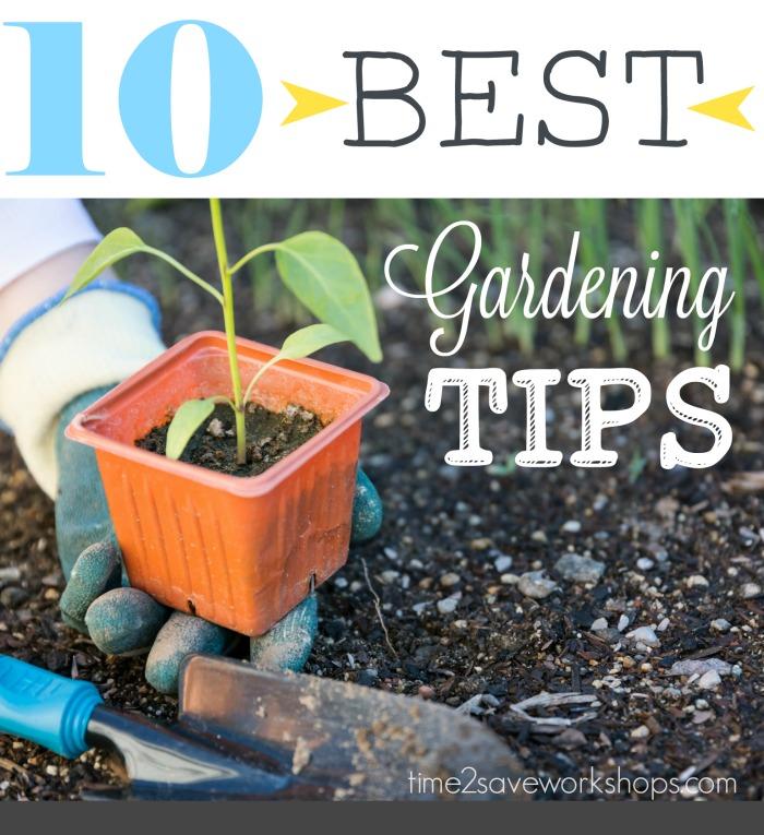 10-best-gardening-tips