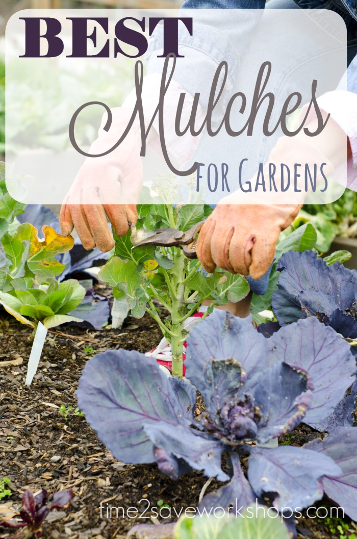 best-mulches-for-gardens