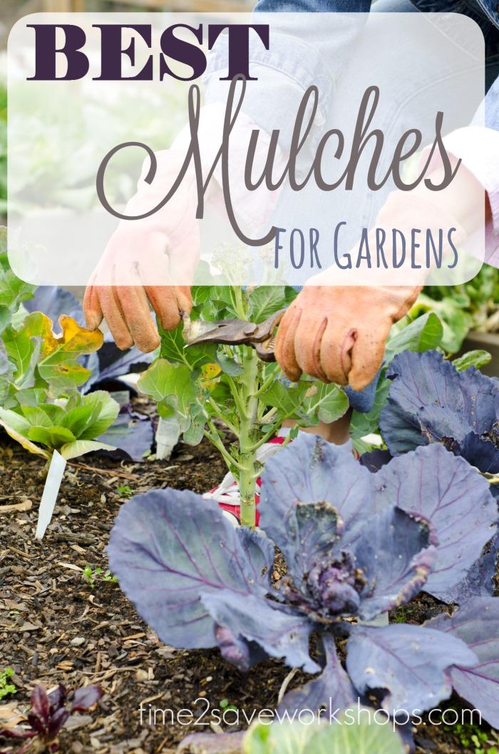best-mulches-for-gardens