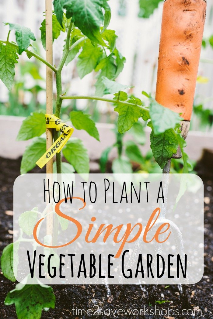 Sweet Simplicity How To Plant A Simple Vegetable Garden