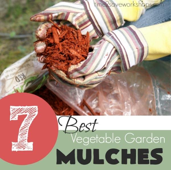 vegetable-garden-mulch-options