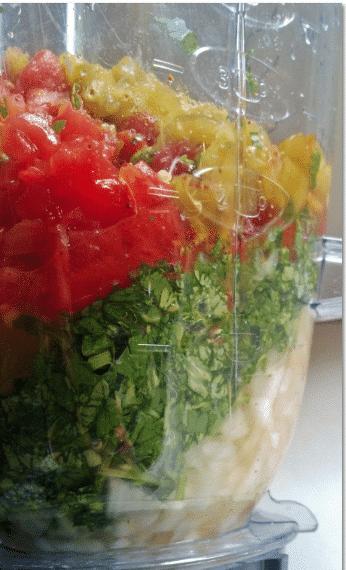 salsa-blender
