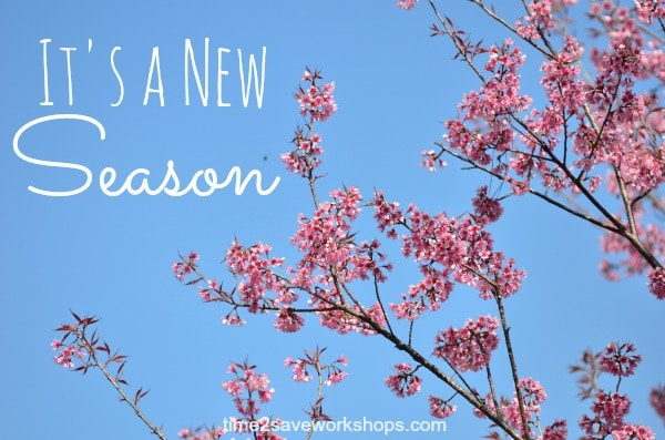 new-season