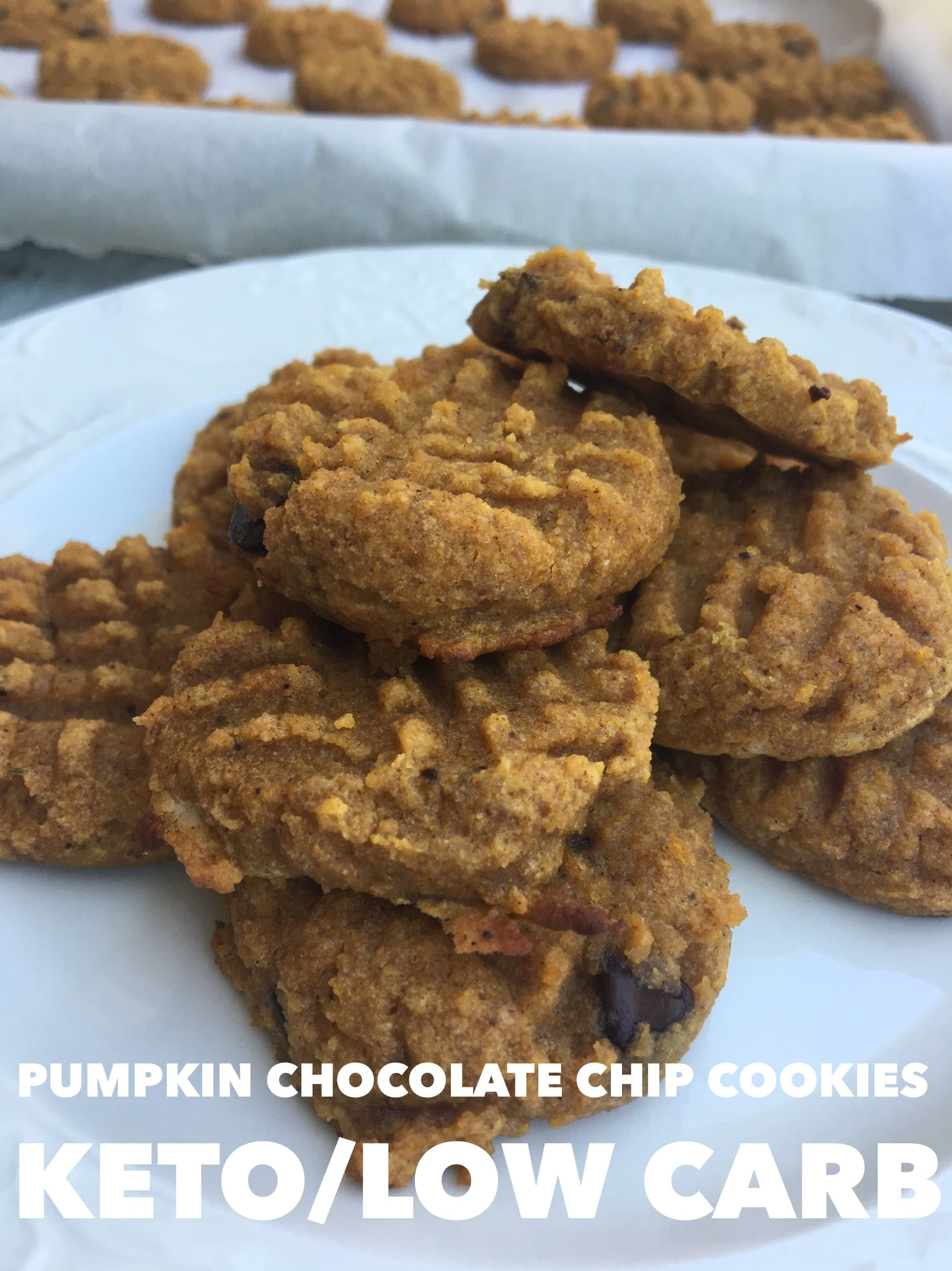 Pumpkin Chocolate Chip Cookies {Keto / Low Carb}