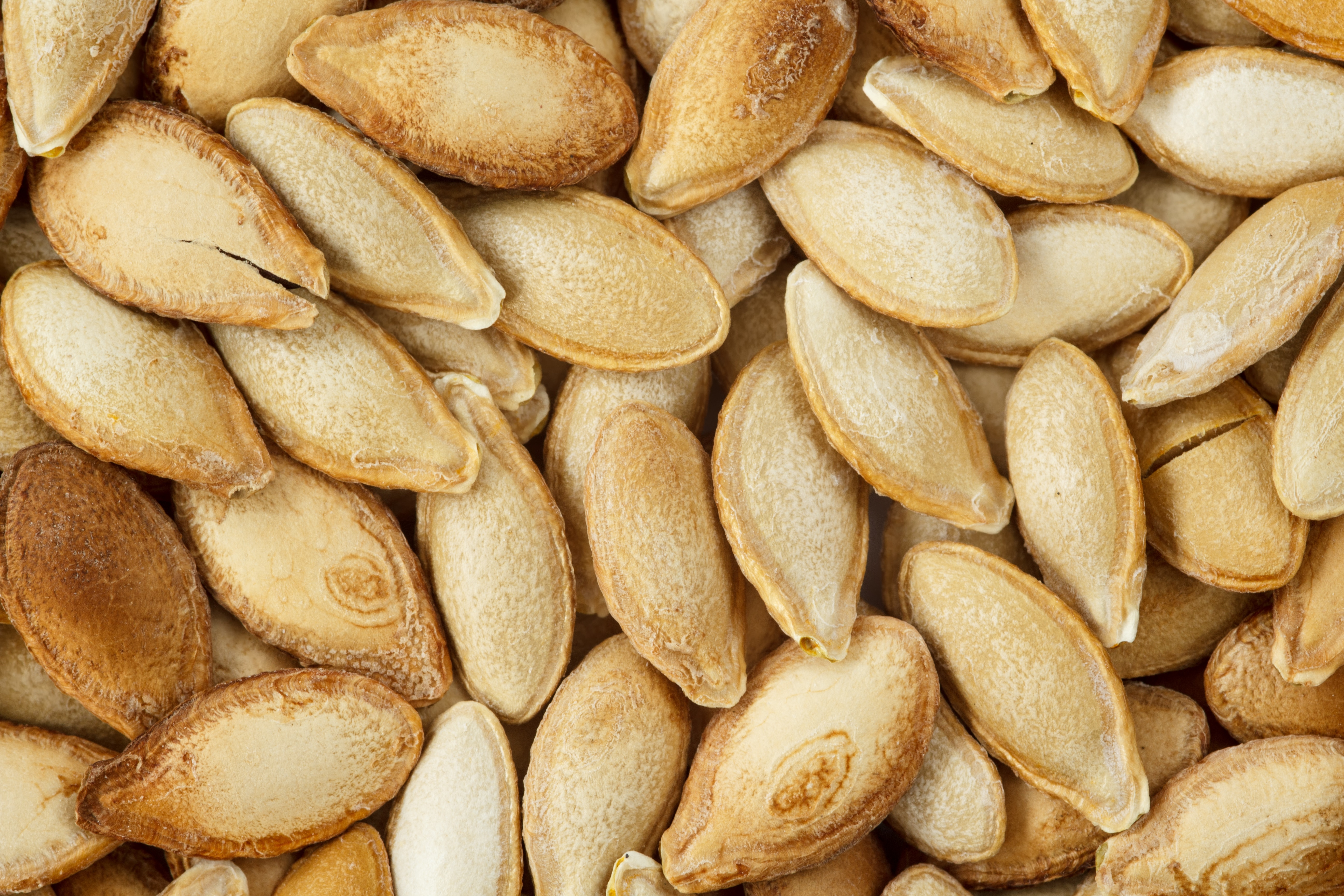 roasted pumpkin seeds unclose pic