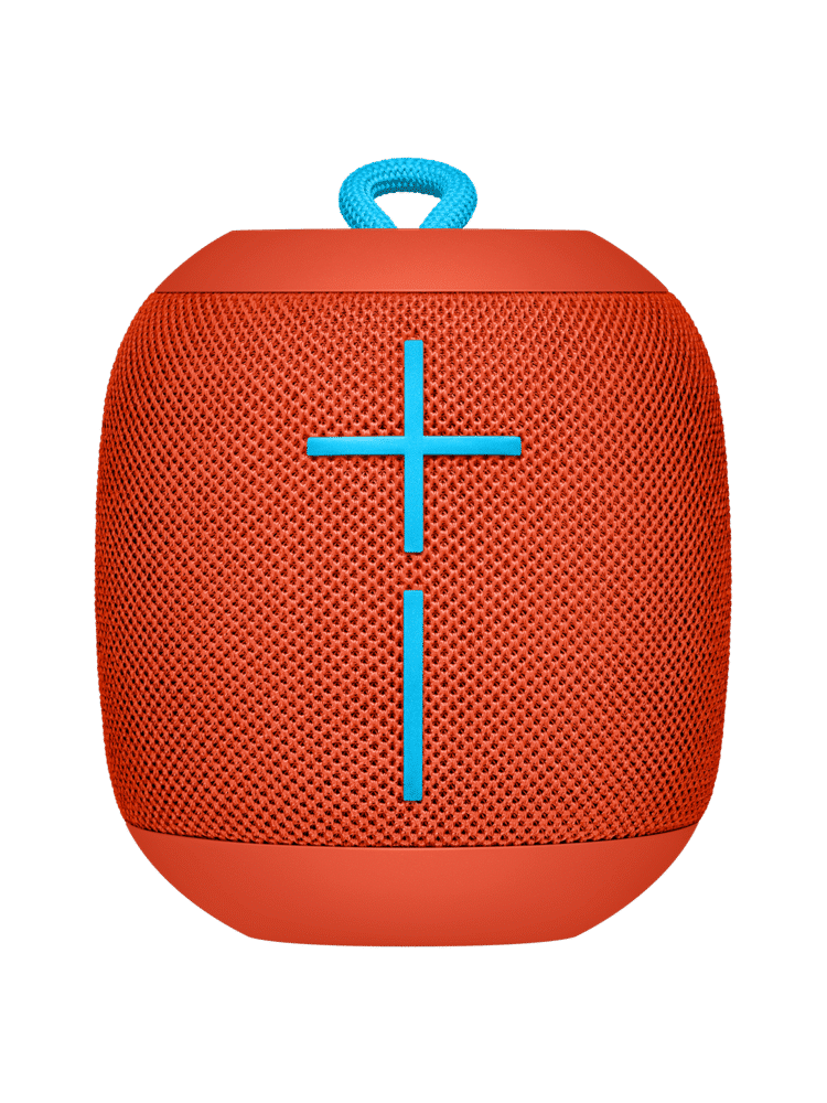 Wonderboom 1