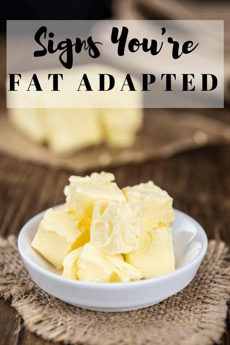 Signs You're Fat Adapted