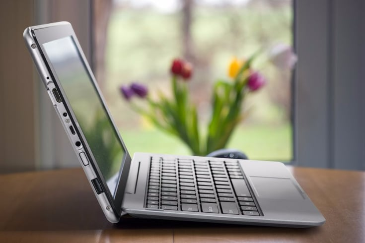 Laptop in front of the window with tulips