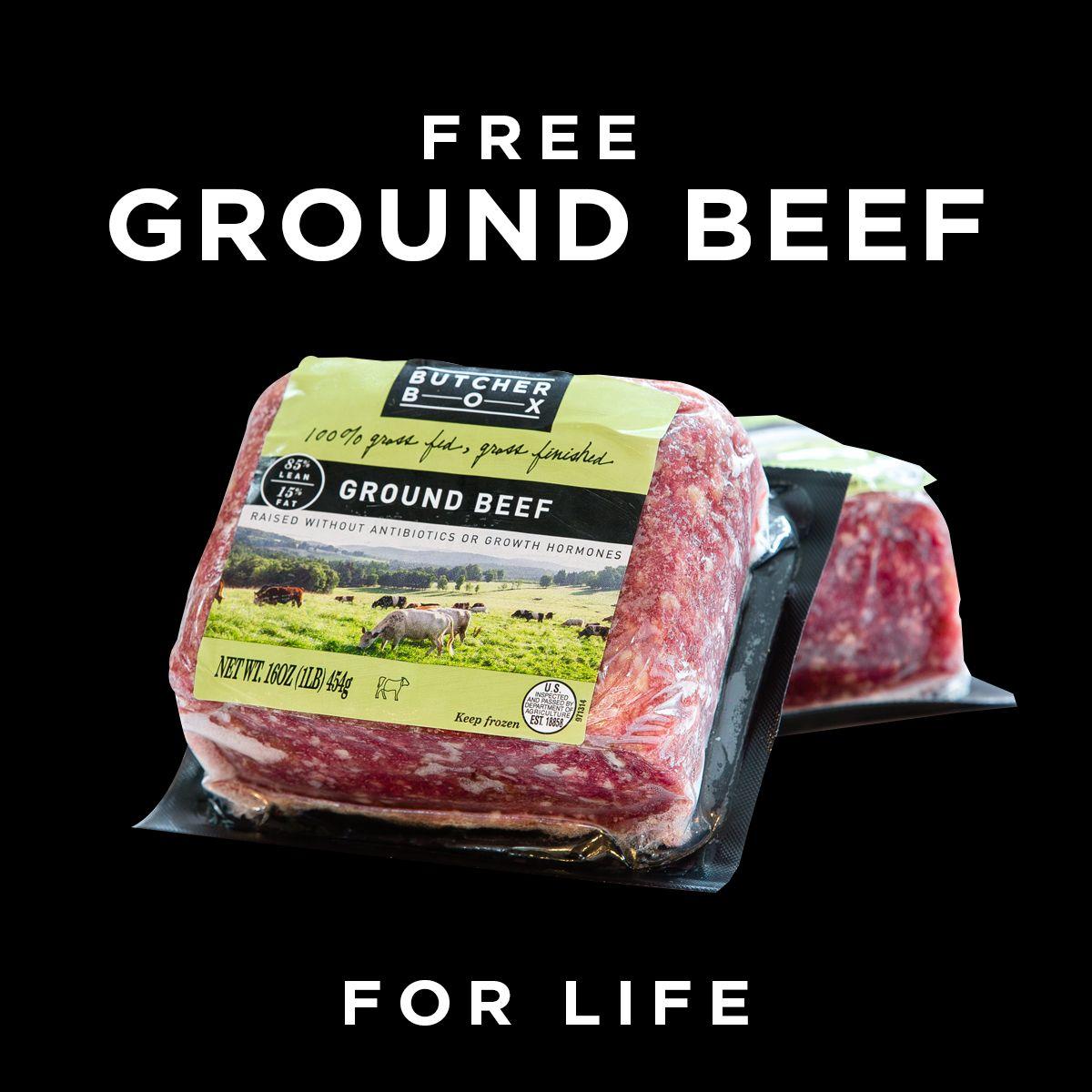 ground beef picture of frozen ground beef
