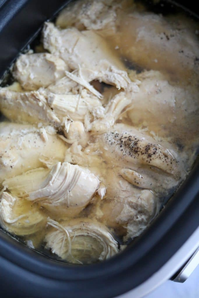 slow cooker with chicken breasts in water