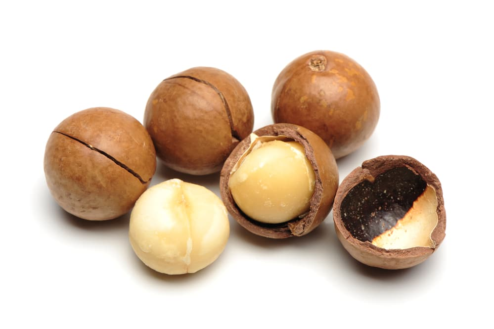six macadamia nuts some in shell some cracked
